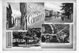 Canino (Viterbo) -  Saluti Da Canino - Viterbo