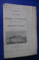PFV/33 Mantovani TRATTATO ELEM.DI STORIA NATURALE MINERALOGIA E GEOLOGIA Giusti Ed.1910 - Matematica E Fisica
