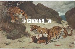 G. Rötig - Les Tigres (Salon De Paris) (pub. Chocolat Cardon - Cambrai) - N° 987 - Peintures & Tableaux