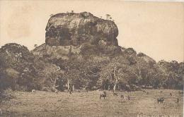 Ceylon, Sigiriya Rock And Plain   (Sri Lanka) (Ceylan) - Sri Lanka (Ceylon)