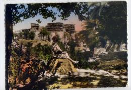 Alg�rie--BANIANE--La Guel�a  de Baniane (anim�e) ,cpsm 15 x 10  n� 749  �d Combier