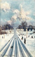 Pays Div- Canada -ref B932- Park Slide - Montreal - Pistes De Luge- Raphael Tuck And Sons - Oilette Postcard  - - Canada