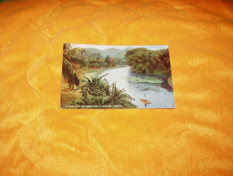 CARTE POSTALE NON CIRCULEE DATE ?. / JAMAIQUE / JAMAICA 6. SCENE ON THE RIO COBRE RIVER, ST. CATHERINE. - Postcards