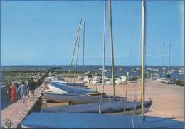 44 - PREFAILLES - Pointe St-Gildas, Le Club Nautique - Préfailles