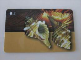 GPT Magnetic Phonecard,52OMNE Seashells Of Oman,used - Oman