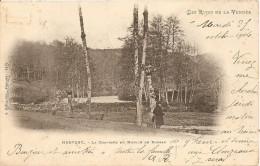 Mervent - La Chaussée Du Moulin De Doreau - Frankreich