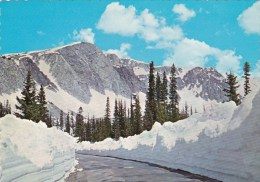 Highway 130 Over The Snowy Range In Medicine Bow National Forest
