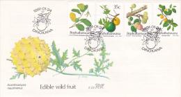 Bophuthatswana 1991 Edible Wild Fruit FDC - Bophuthatswana