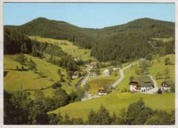 Bad Rippoldsau / Schwarzwald , Holzwald - Bad Rippoldsau - Schapbach
