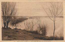 Bouaye Le Coin Du Lac De Grand -lieu - Bouaye