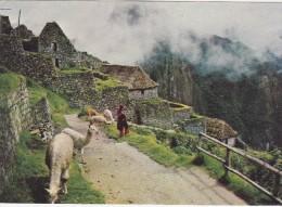 Cp , PÉROU , Machupicchu , Village Typique INCA - Pérou