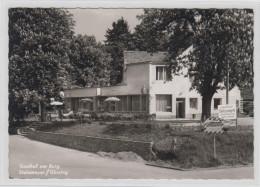 AK - Güssing - Gasthof Stelzmayer - 50ziger - Güssing