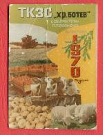 K1093 / 1970 VILLAGE VALCHI TRAN - FARM - TOMATO ONION COW PIGS  Calendar Calendrier Kalender Bulgaria Bulgarie - Petit Format : 1961-70