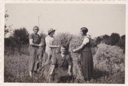 AISNE,PICARDIE,VOUEL EN 1932,TERGNIER,PICARDIE,fe Rmiere,femme De La Terre,métier,rare