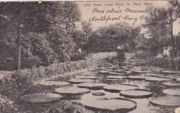 Lilly Pond Como Park Saint Paul Minnesota 1907