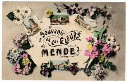 Un Souvenir Et Ces Fleurs De Mende (multivues) - Mende