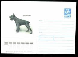 Pet Dog Hunde Giant Schnauzer Riesenschnauzer Schnauzer Snautseri On Russia USSR Mint Cover From 31 05 1989 URSS - Honden