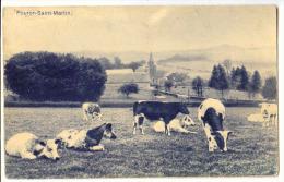 E3433  -  SIPPENAEKEN  -  Château De BEUSDAEL  -  *panorama* Vaches* Bétail* - Voeren