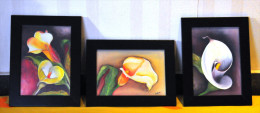 """UAE / Emirates Arabes - FLOWERS Fleur Flora Set Of 3 Oil Paintings, Signed ZEBA , Framed 6.5"""" X 8.5"""" Inches - As Per Pic - Huiles"""