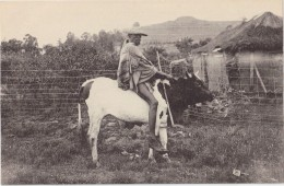 CPA Animée - LESSOUTO - Mossouto En Voyage - Lesotho