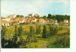 Creutzwald Le Parc Municipal Le Lycée Classique Et Moderne - Creutzwald