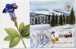 YUGOSLAVIA 1983 Nature  Protection On Maxicards.  Michel 2000-01 - Maximum Cards