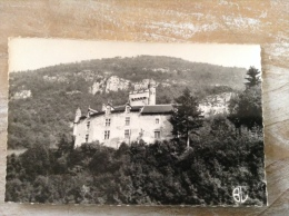 Cheignieu Labalme Le Château (cpsm Format Cpa) - Frankreich