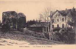Salm-Château 16: Les Ruines Et Le Château - Vielsalm