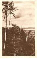 POSTAL DE LAS CAROLINAS Y MARIANAS DE BOSQUE ADENTRO (MISION-MISIONES) (MATEU.S.A) - Mariannes