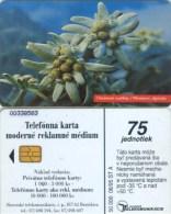 Telefonkarte Slowakei - Blume,flower - Aufl. 50000 - 08/95 - Slowakei