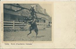 Ieper / Ypres - Ecole D´Equitation - Cabrade - 1903 ( Verso Zien ) - Ieper