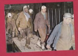 SORTIE DE CAGE A LA REMONTEE AU JOUR - Mines