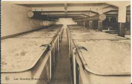 LES GRANDES BRASSERIES D´IXELLES - UNE VUE DE LA CAVE DE FERMENTATION - Industrie
