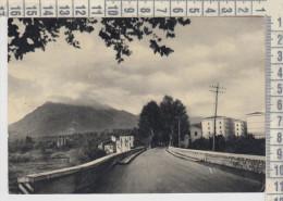 Avellino  Monte Vergine Visto Da Avellino  1955 - Avellino