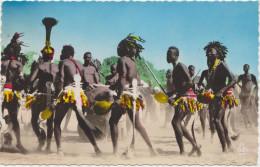 R�gion de Daba (Tchad) danses apr�s la r�colte du coton.
