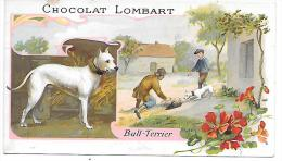 CHROMO  - CHOCOLAT LOMBART - Bull Terrier - Lombart