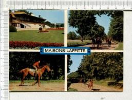MAISONS LAFFITTE  -  Tribunes  Et   Chevaux    à L Entrainement  - 4 Vues - Maisons-Laffitte