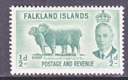 FAKLAND  ISLANDS  107  *   FAUNA  SHEEP - Falkland Islands
