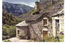 FRANCE  **  81 Les Gorges Du Tarn  Maison Lozérienne   2903 - France