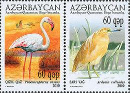 az832 Azerbaijan 2010 Azerbaijan-Kazakhstan joint issue Bird Crane Michel 832~3