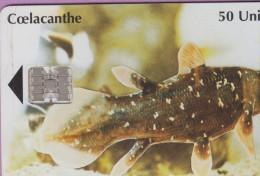 Télécarte Comores °° 14 - 50 Unités - Coelacanthe  -  Numéro Rouge étroit Verso 00329036 - Comores
