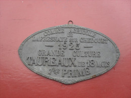 Plaque Comice Agricole 1925  La Fresnaye Sur Chedouet  Dept 72  Sarthe Grande Culture Taureaux - Plaques Publicitaires