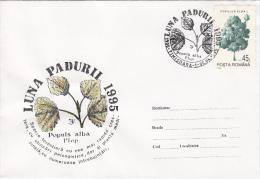 TREES, SILVER POPLAR, SPECIAL COVER, 1995, ROMANIA - Trees