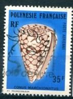 POLYNESIE  PA (o) Y&T N° 116 : Coquillage - Poste Aérienne