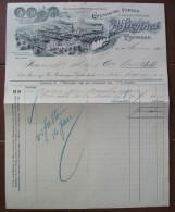 FATTURA CHEMISCHE FABRIK & DROGUEN HANDLUNG  SIEGFRIED ZOFINGEN SVIZZERA ANNO 1901 CANTON ARGOVIA - Svizzera