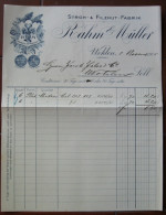 FATTURA STROH & FILZHUT FABRIK RAHM & MULLER WOHLEN AARGAU SVIZZERA ANNO 1905 - Svizzera