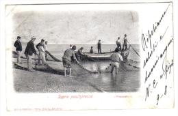 Scene Pescherecce Preparativi Spedita Da Senigallia 1901 C.1582 - Senigallia