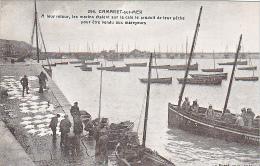 23731 Camaret Sur Mer - Marins Etalent Cale Produit Peche Vendu Mareyeurs -294 Doaré -raie Bateau St Pierre D693 - Camaret-sur-Mer