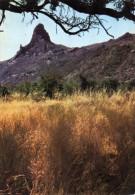 6512 - Tchad - L'Abou Telfane � la fin de la saison des pluies