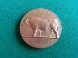 Ministerie Van Landbouw 1954 (Raymond De Meester), 40 Gram (medailles0990) - Belgien